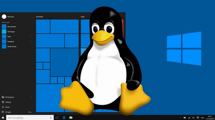 linux-hay-windows-hosting-tot-hon-cho-wordpress